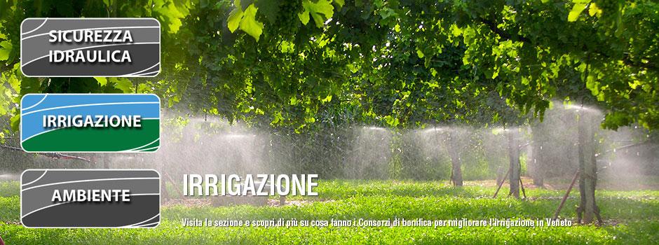 irrigazione_sli