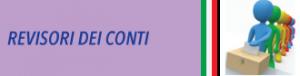 REVISORI-DEI-CONTI