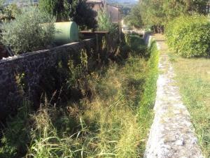 montecchio-crosara-2